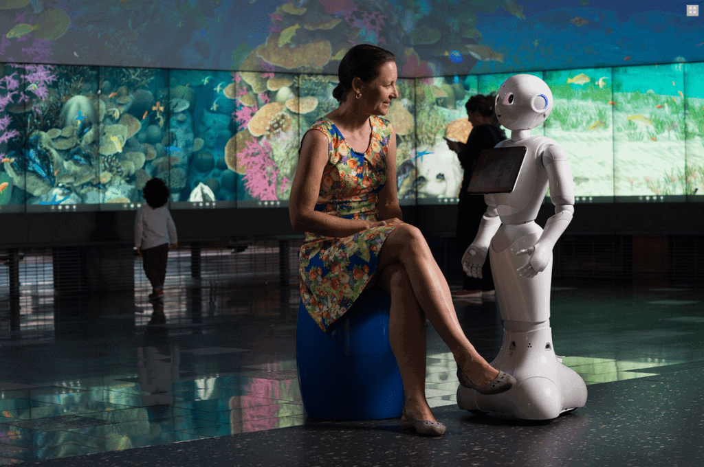 2017-08-10 13_5Social robot study with Pepper