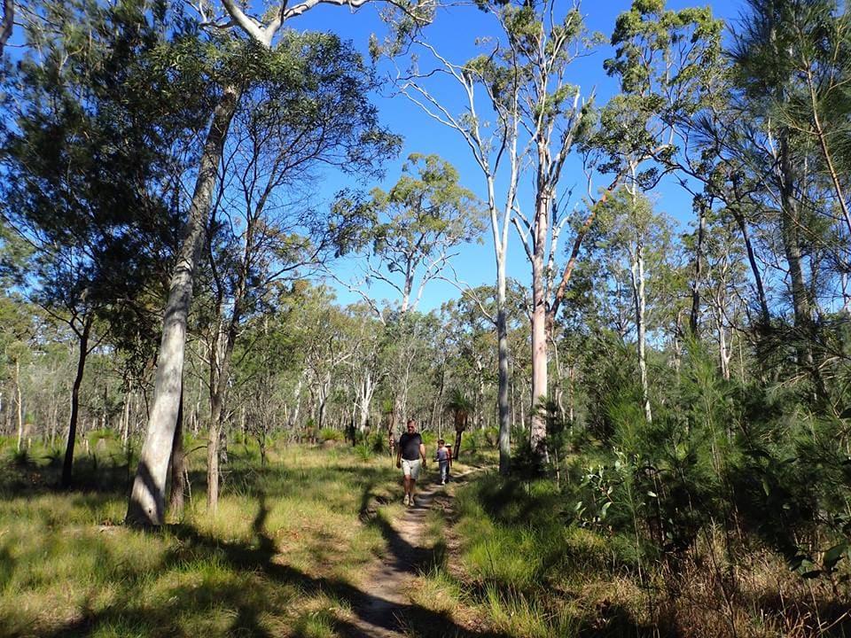Freshwater National Park scenery