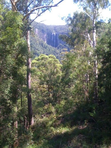 Minyon Falls and The Boggy Creek Walk