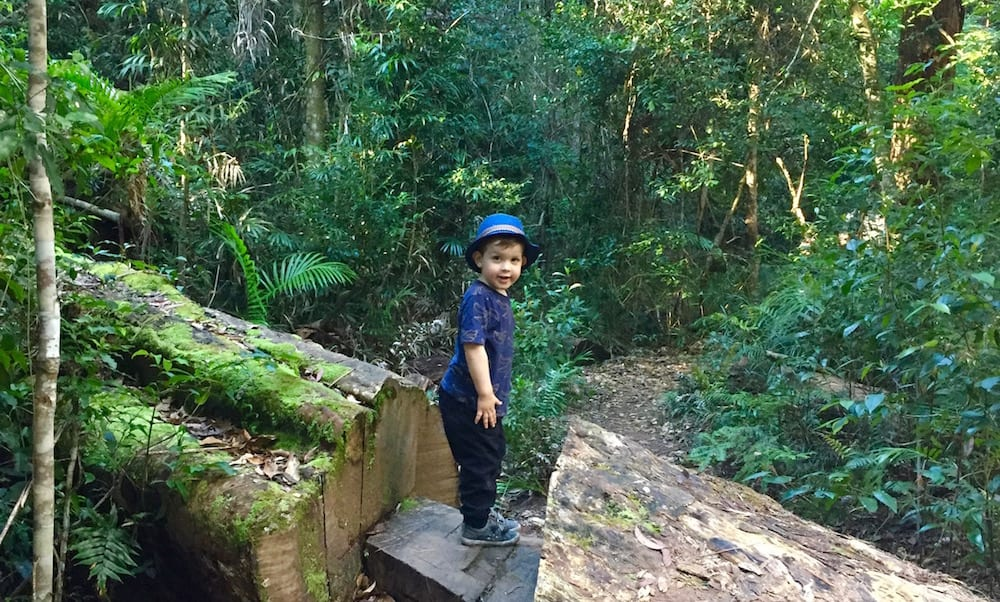Minyon Falls and The Boggy Creek Walk