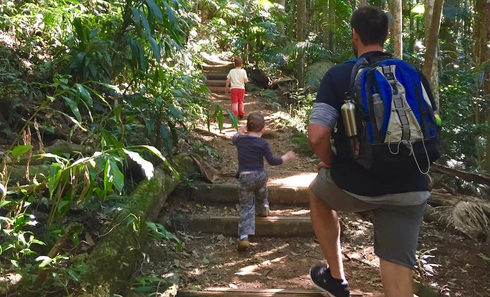 Father and small boys walk the Mount Warning with kids trail