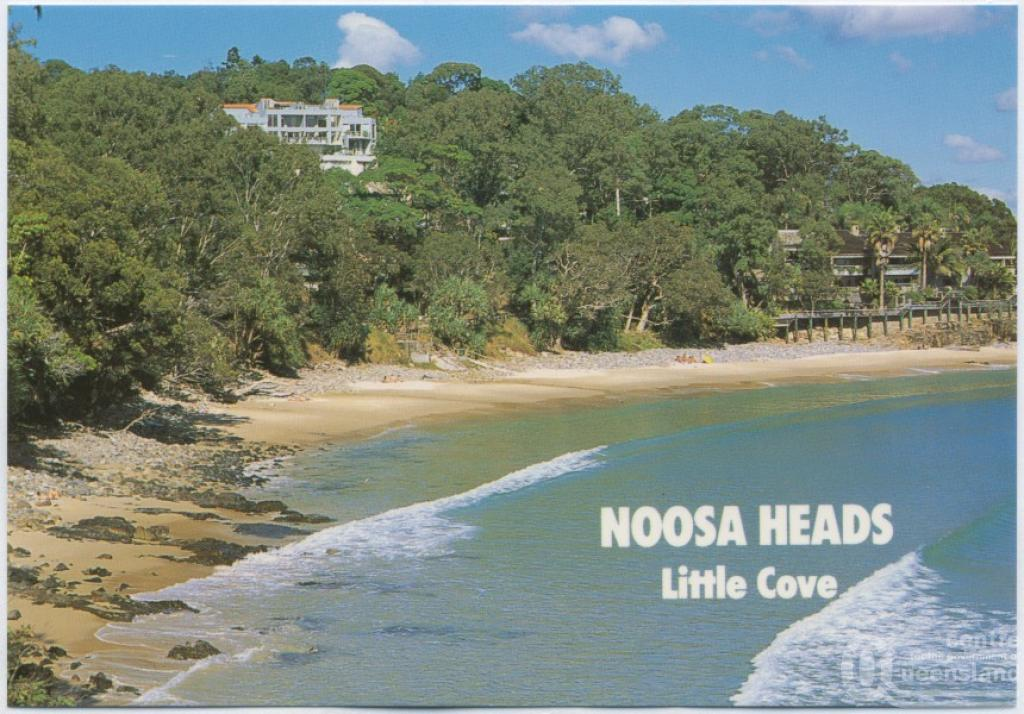 things to do in noosa with kids little cove