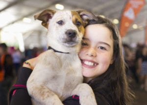 This is the most adorablefree event in all of Australia! Bringing together over 30 rescue groups, 10,000 people and finding homes for over 250 animals.