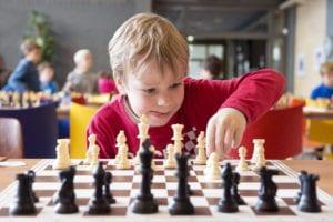 chess clubs brisbane