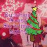 Sunshine Coast Christmas Lights feature image