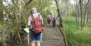 free things to do in toowoomba hiking