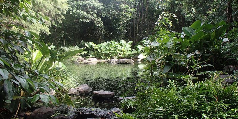 redcliffe botanic gardens