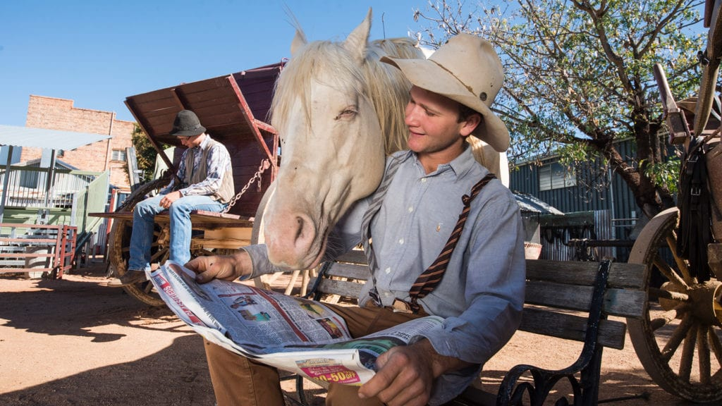 outback pioneers horse