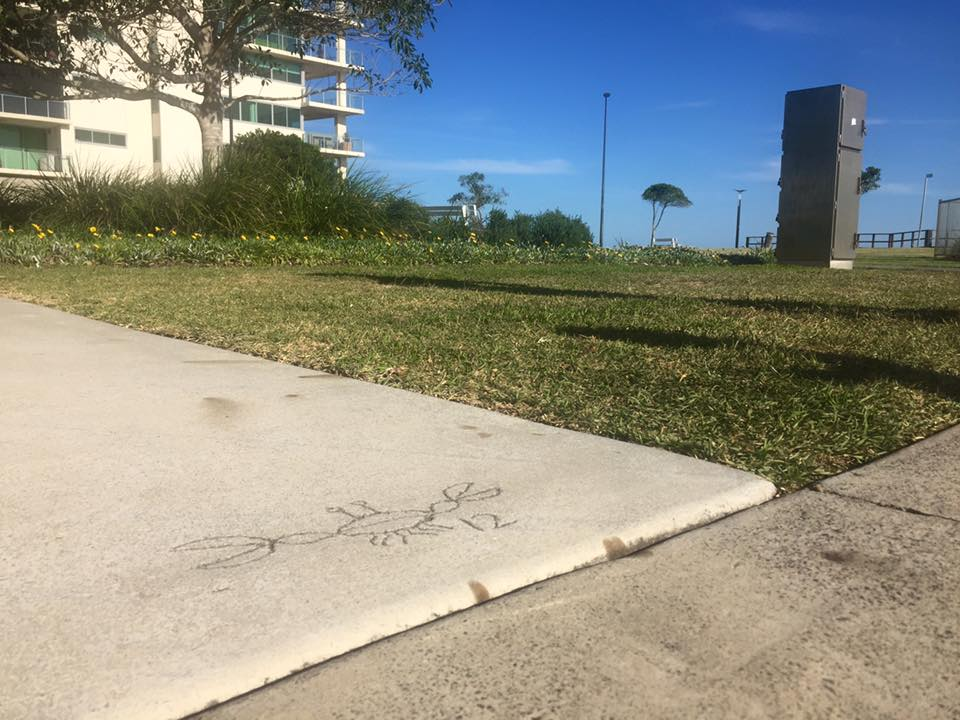 Woody Point board walk concrete art crabs