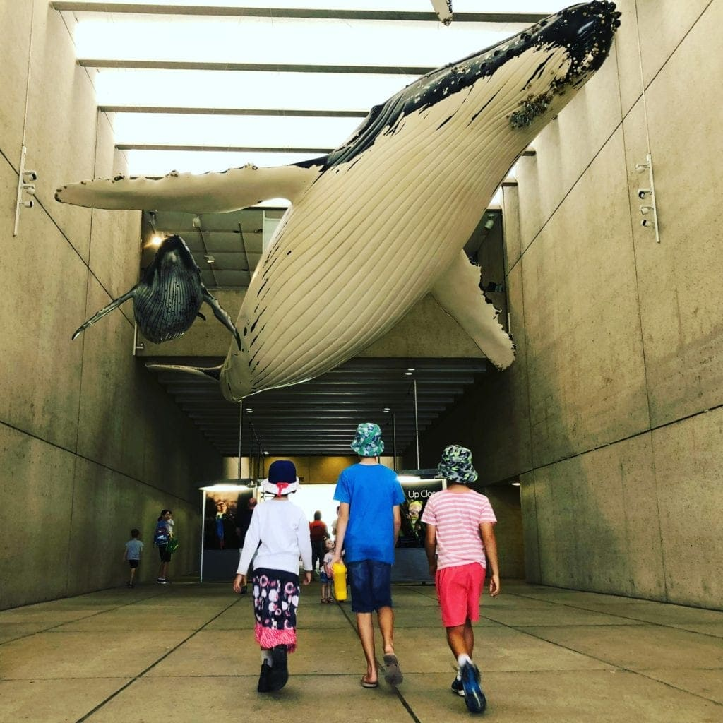What's on in Brisbane Today for Families