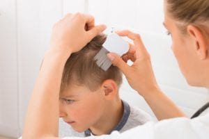 natural solutions for head lice