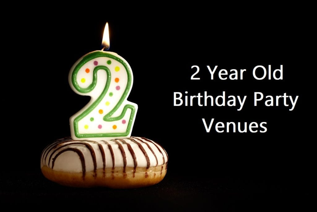 2 Year Old Birthday Party Venues