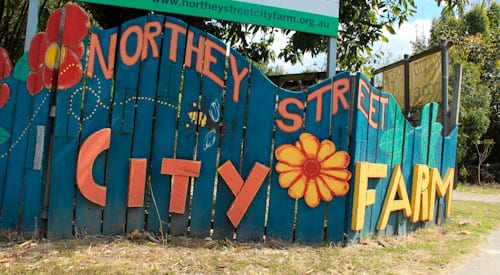 northey st markets