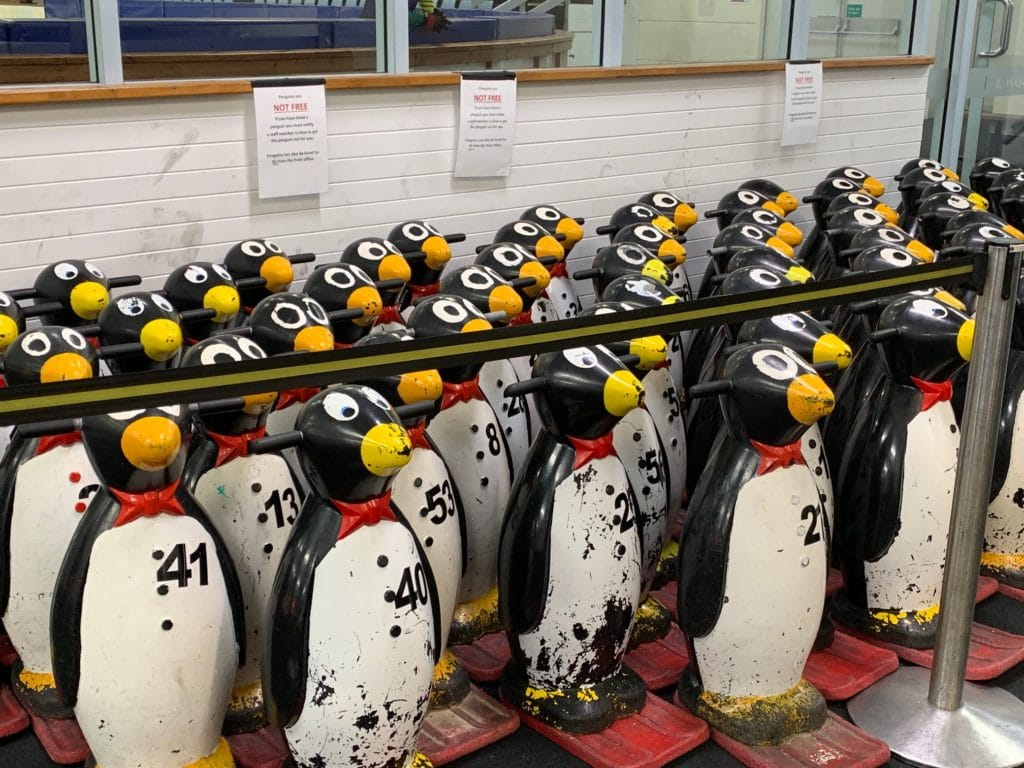 Balance penguins available for hire