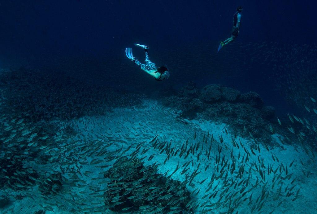 solomon islands diving