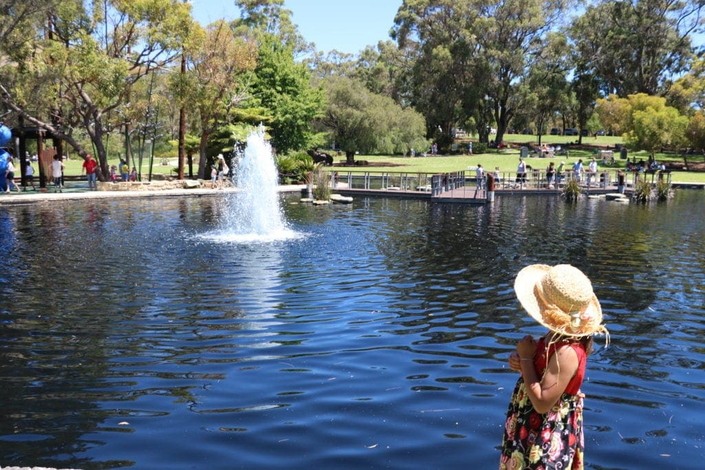 favourite playgrounds kings park