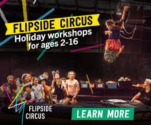 Flipside Circus