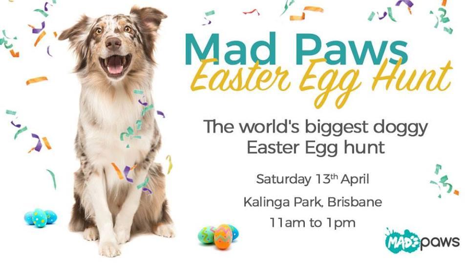 Brisbane's Easter Egg Hunt for Dogs