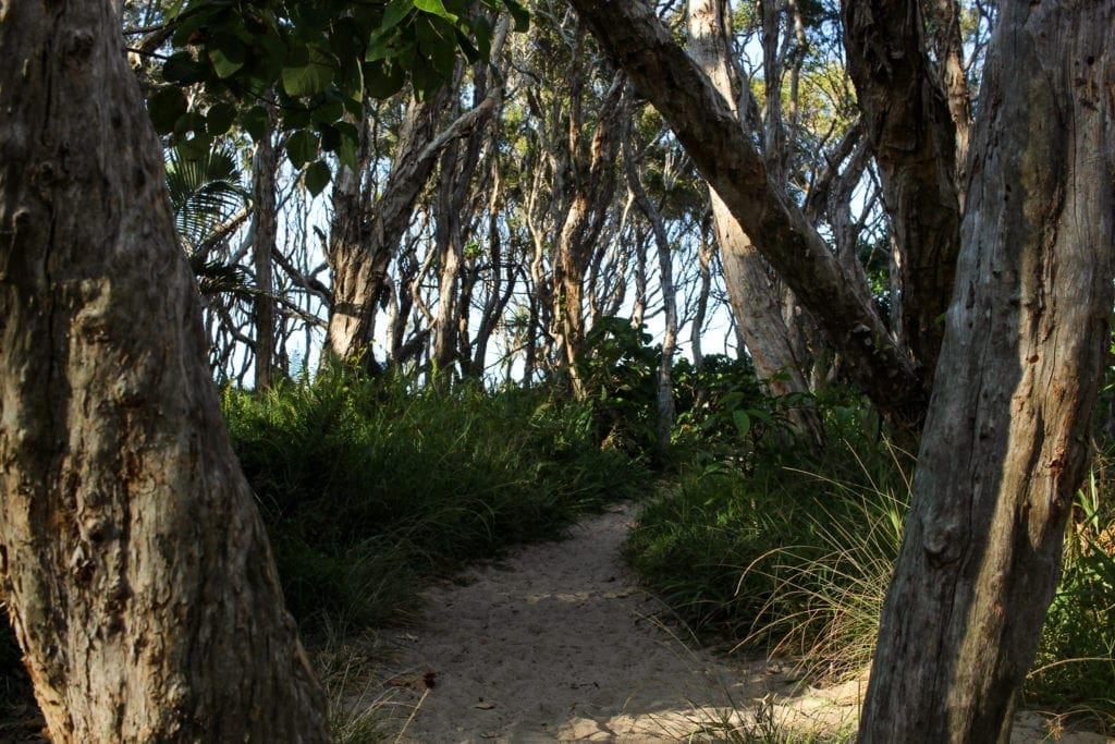 Homes Beach