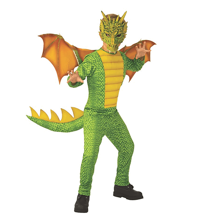 Dragon book week costume
