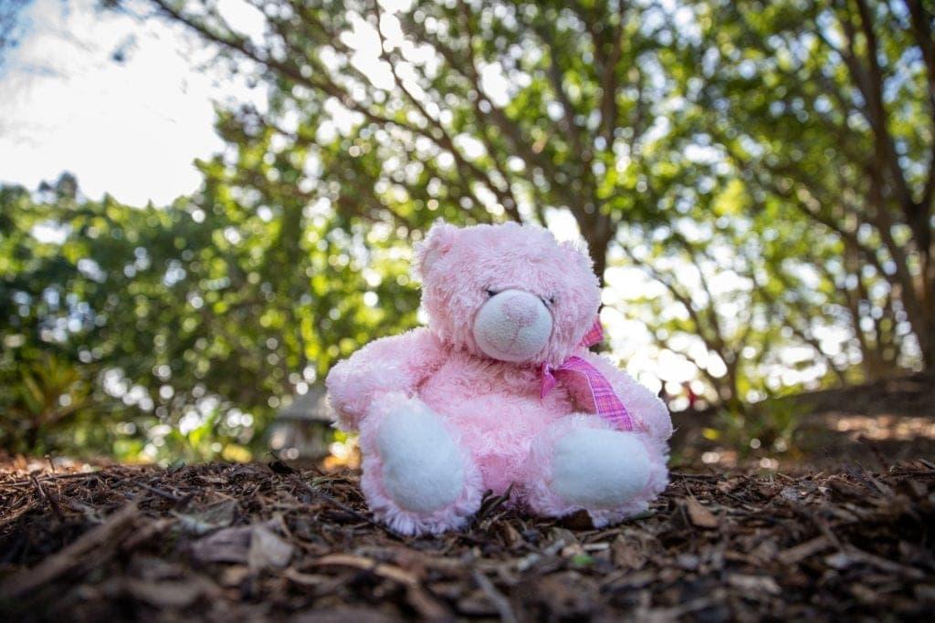 Narangba Teddy Bears' Picnic