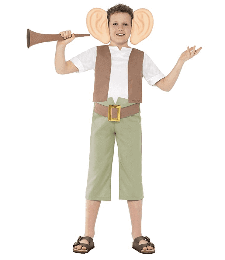 The BFG book week costume