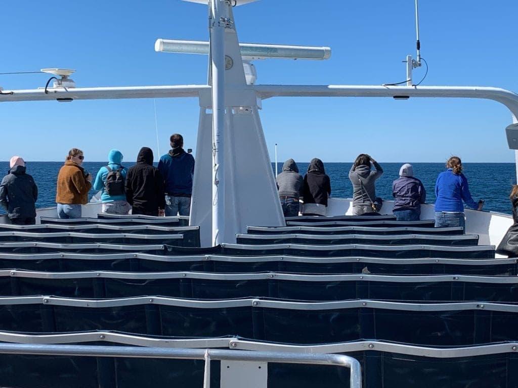 Tangalooma Catamaran Top Deck