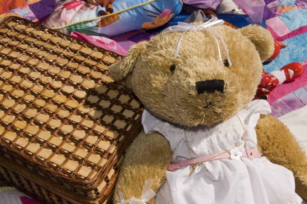 North Lakes Teddy Bears' Picnic