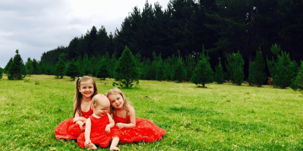 Gold Coast Christmas Trees