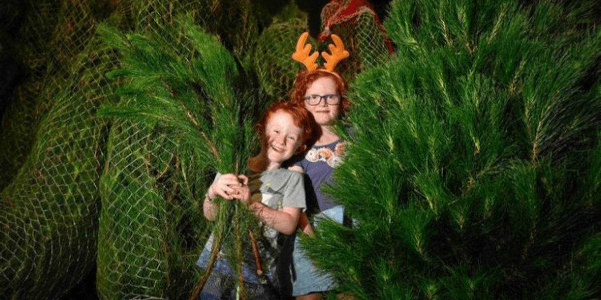 Kids in xmas tree