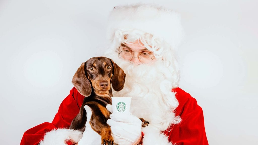 Santa Photo With Your Pooch