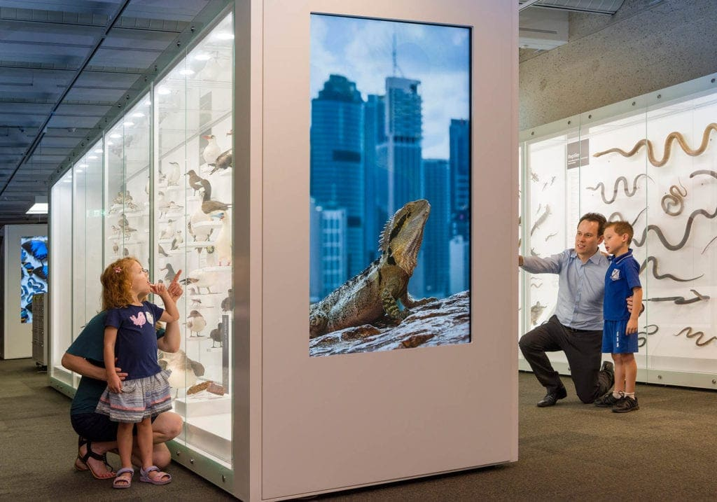 Queensland Museum Discovery Centre