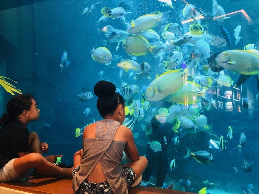 free things to do in Honolulu with kids