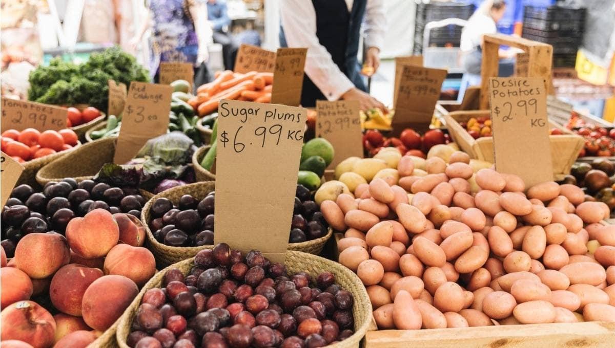 Sunday Markets Brisbane - Milton Markets