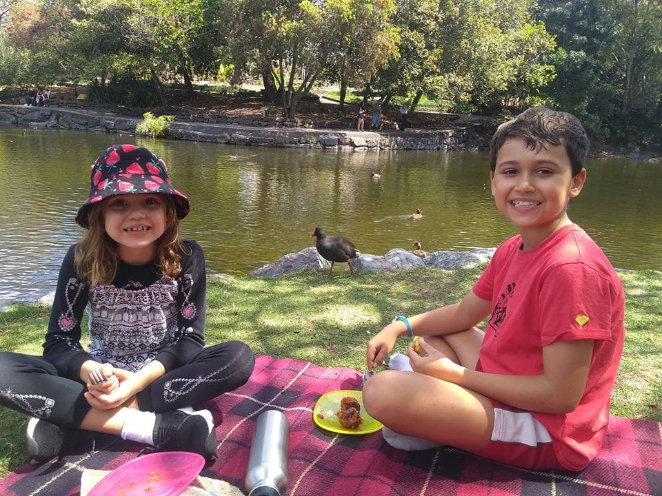 Mt Cootha Botanical Garden best picnic spots in Brisbane
