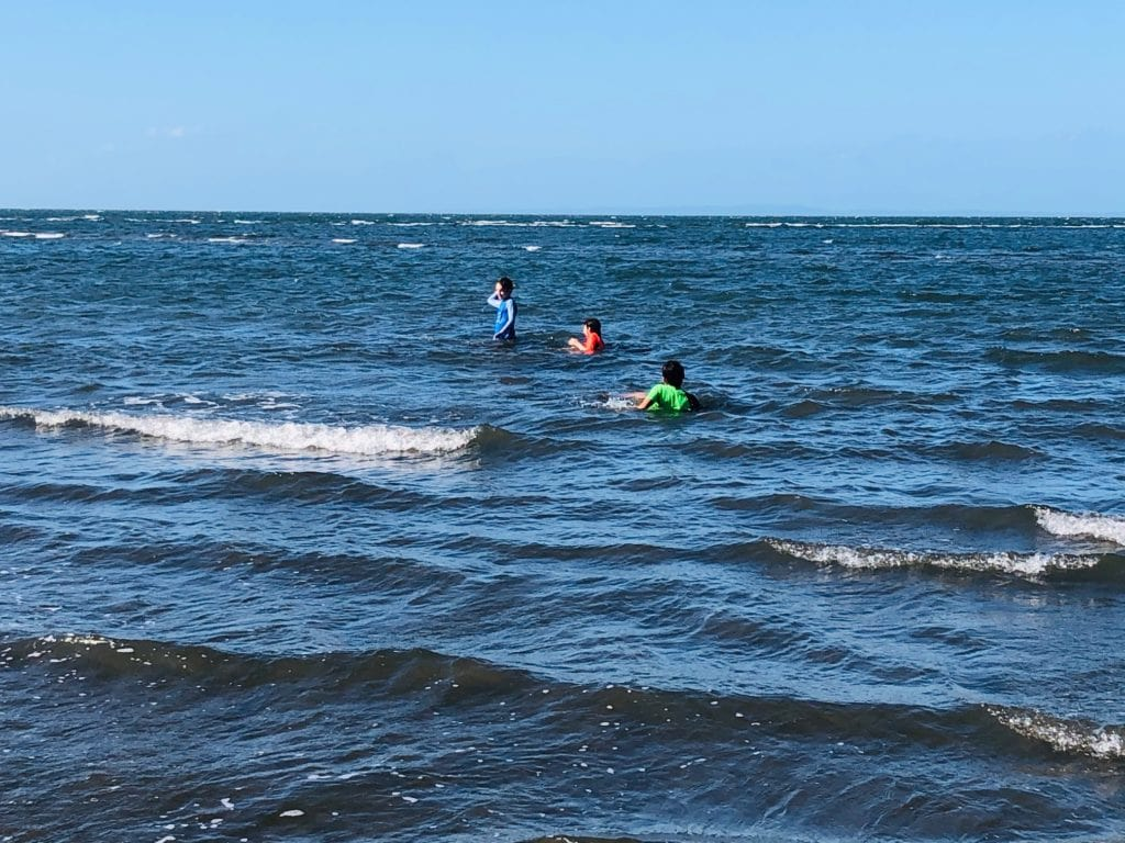 swimming at Nudgee Beach