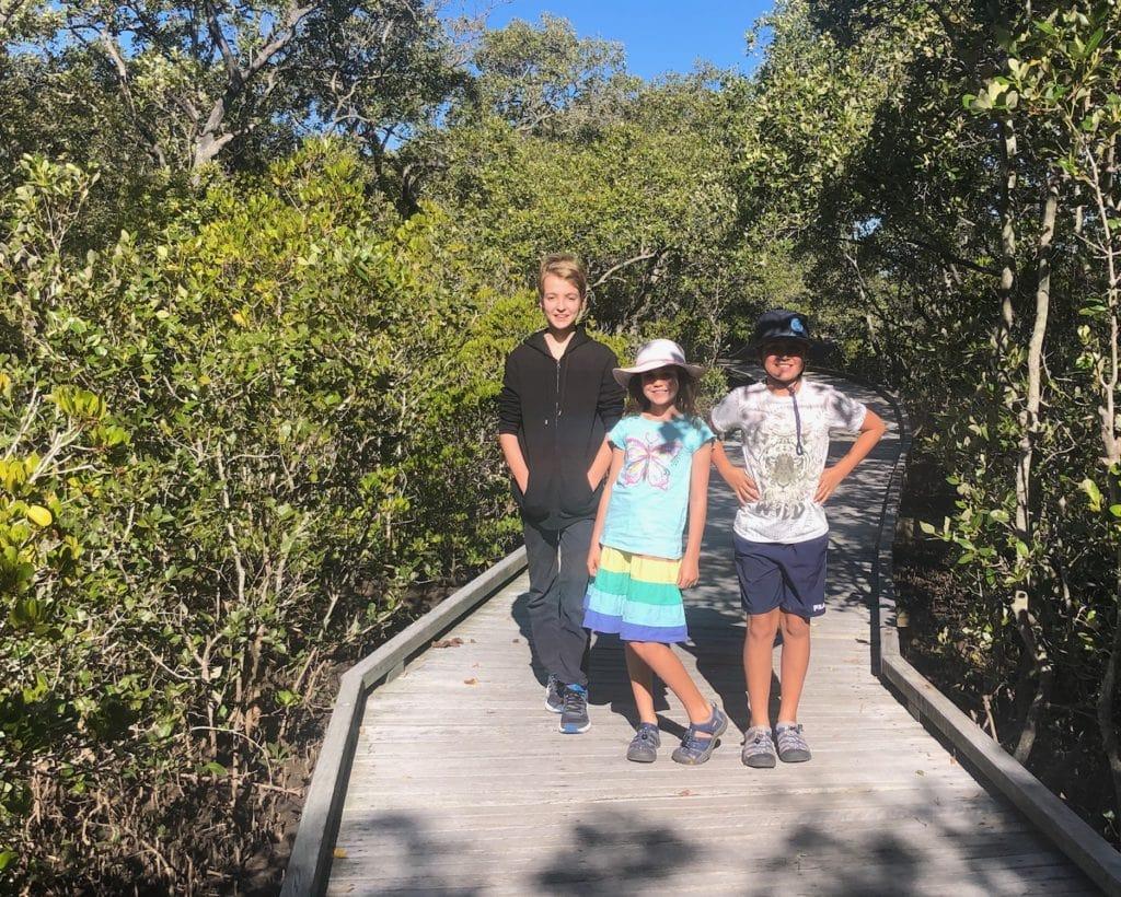 Nudgee Beach boardwalk