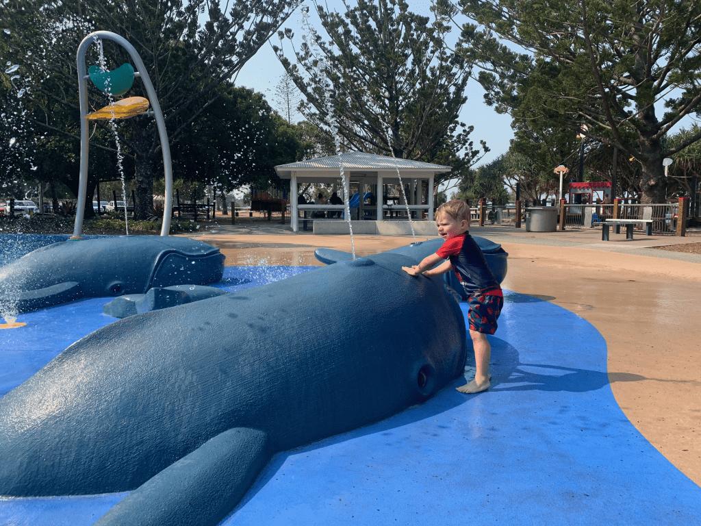 Wynnum Whale Park new whales