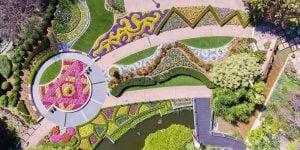 Blooms & Tunes Roma Street Parklands