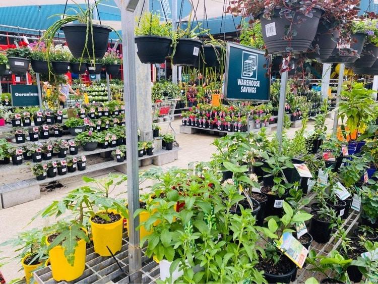 Bunnings Garden Centre