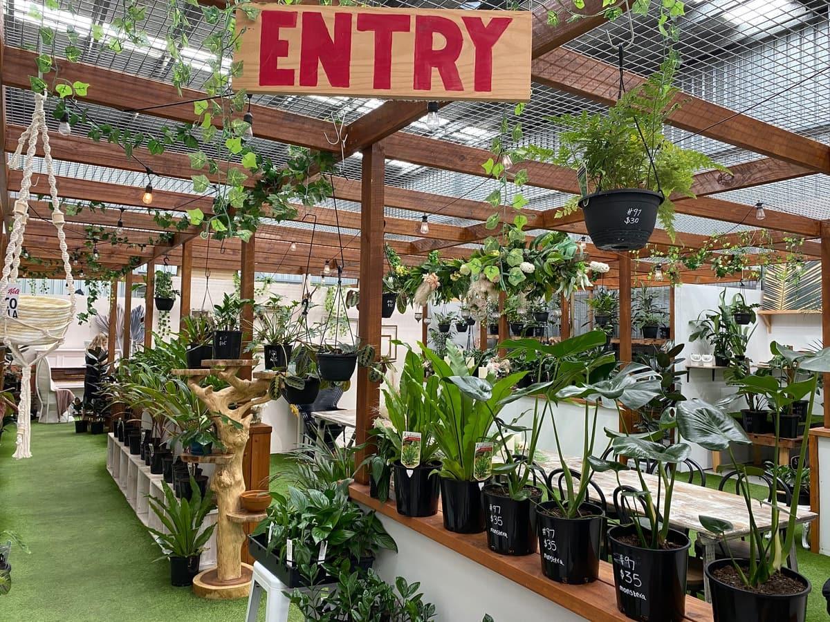 Vend Marketplace - nursery virginia