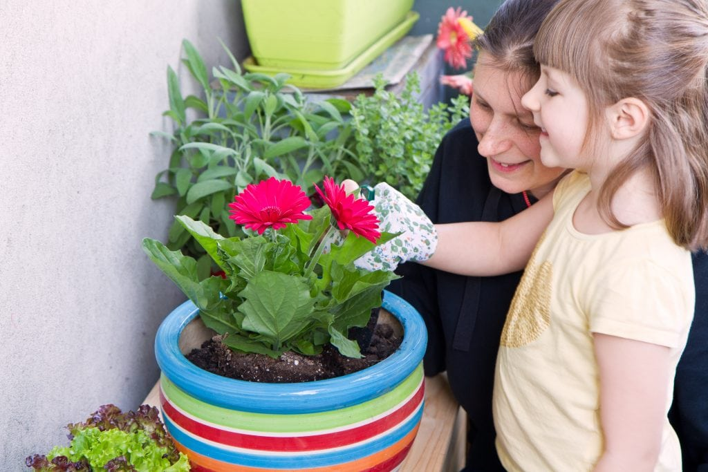 carer and child gardening flower plant