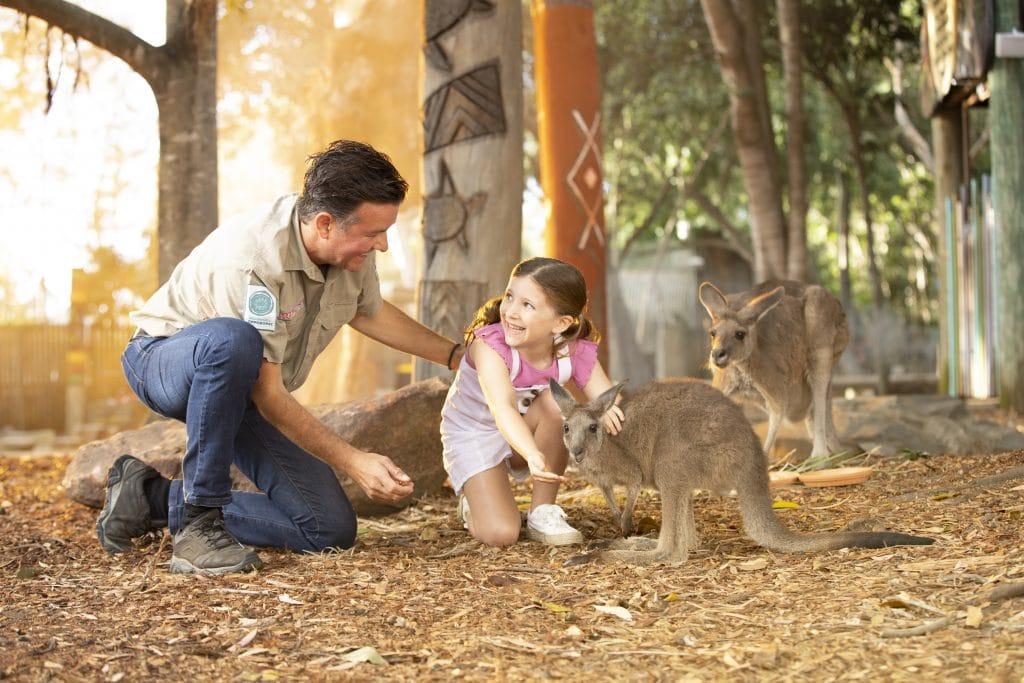 patting the wallaby at Dreamworld Corroboree
