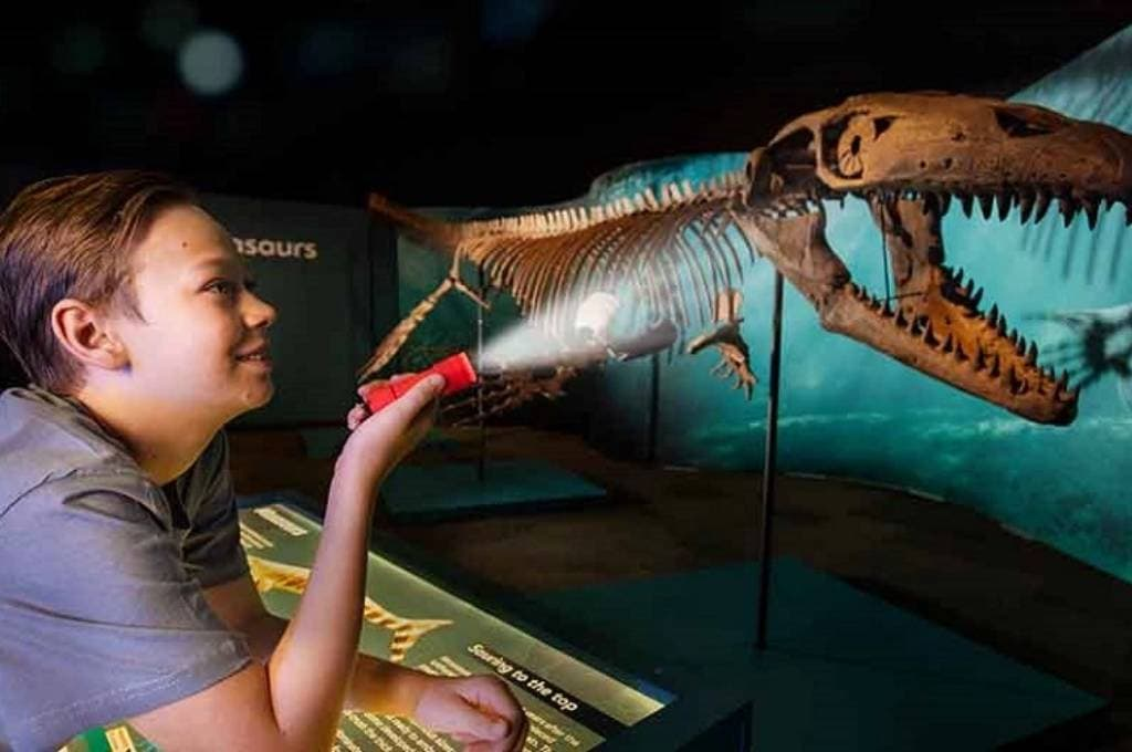 Sea Monsters Torchlight Tours
