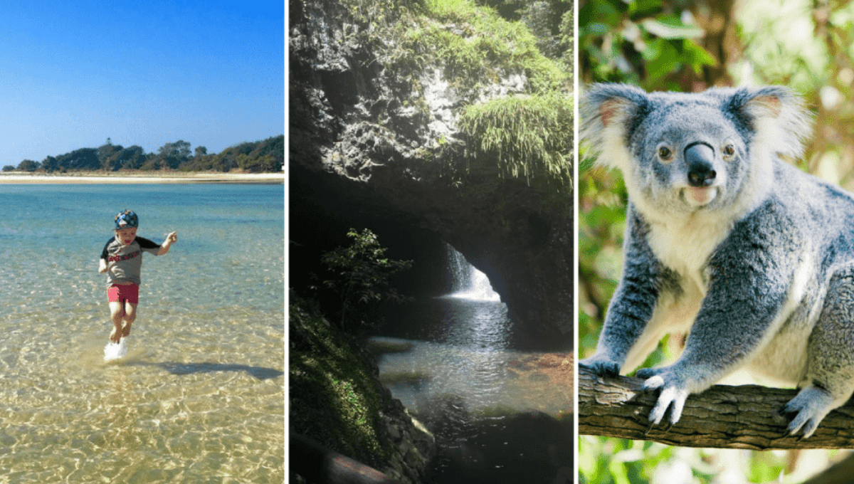best things to do on the Gold Coast with kids