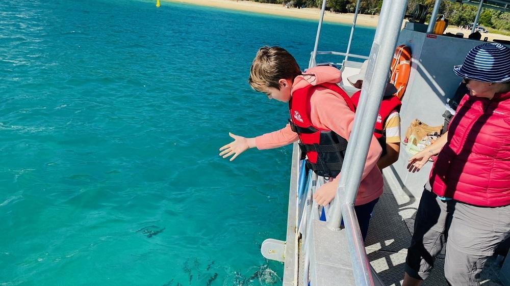 Tangalooma Resort Day Trip