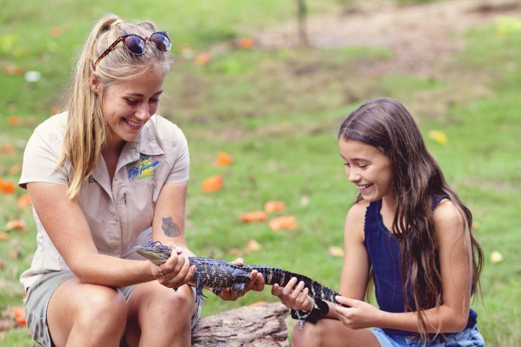 Wildlife HQ Zoo crocodile wild encounter