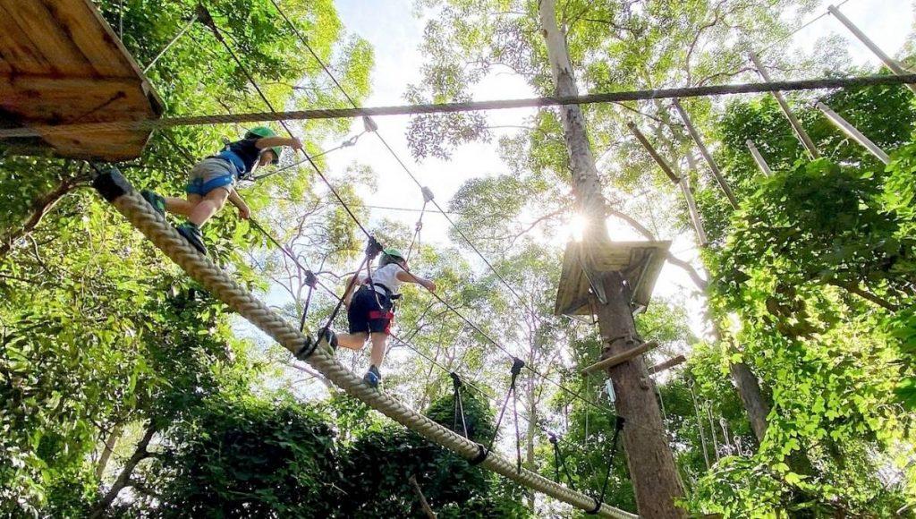 TreeTop Challenge Big Pineapple