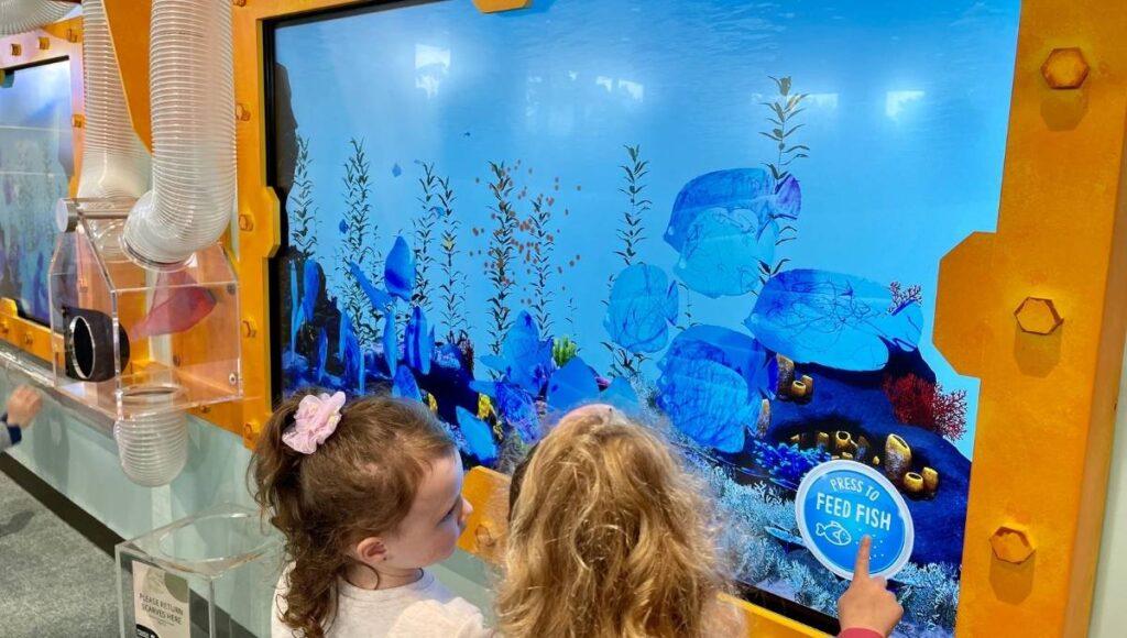 Ipswich Children's Library Fish