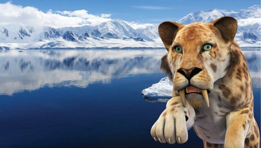 FREE School Holiday Activities Brisbane Southside ice age